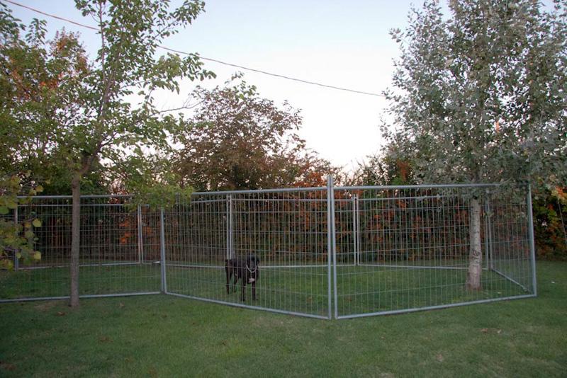 Alcune immagini della pensione per cani villa villacolle - Recinto mobile per cani ...